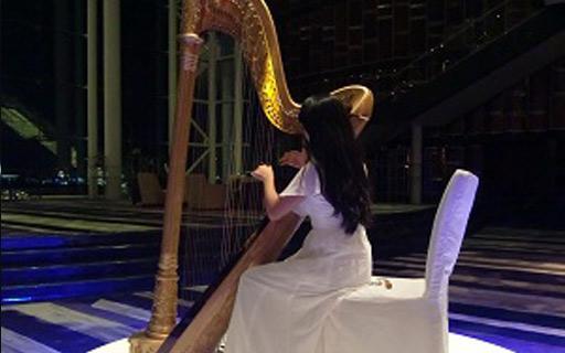 古典竖琴表演
